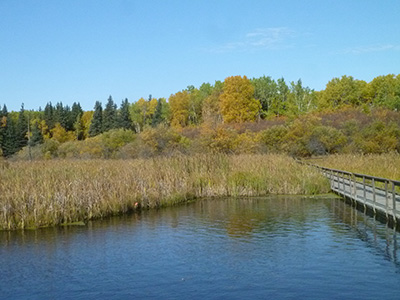 Ominik Marsh in autumn, Riding Mountain National Park