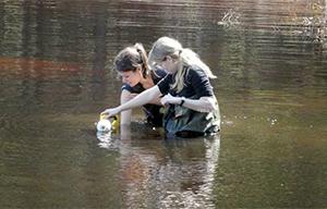 IISD Environmental Lakes Area
