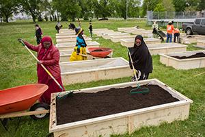 Food Matters Manitoba, Winnipeg
